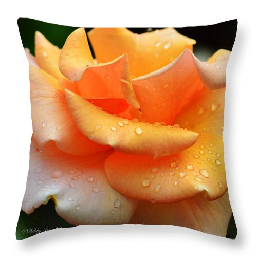 Rose Throw Pillow featuring the photograph Variegated Yellow Rose by Debby Pueschel