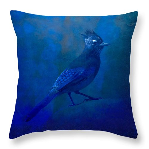 Nature Wildlife Birds Steller's Jay Abstract Impressionism Expressionism Minimalism Blue Indigo Ultramarine Colorado Throw Pillow featuring the photograph Very Blue Jay by Tom Bradley