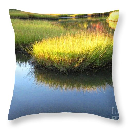 Water Throw Pillow featuring the photograph Vibrant Marsh Grasses by Sybil Staples
