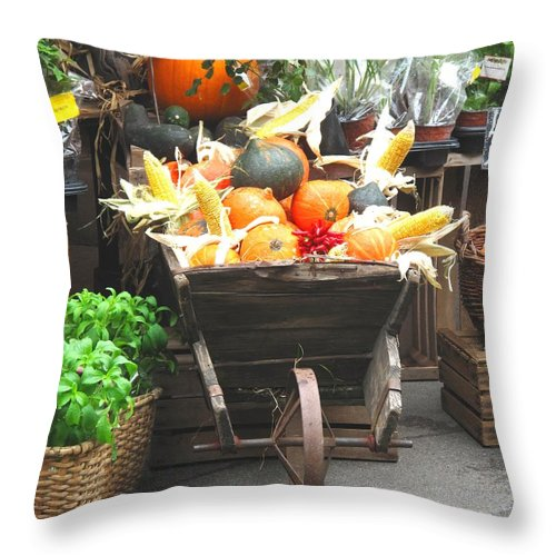 Vienna Throw Pillow featuring the photograph Vienna New Market by Ian MacDonald