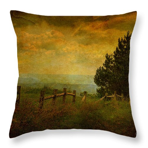 Fence Throw Pillow featuring the photograph View From The Top by Lois Bryan