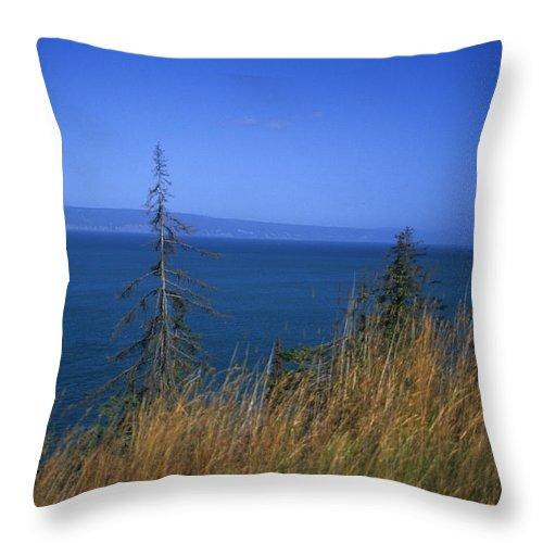 Kachemak Bay Throw Pillow featuring the photograph View Of Kachemak Bay, Alaska by Stacy Gold
