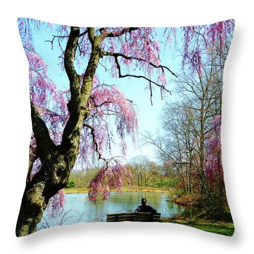 Spring Throw Pillow featuring the photograph View Of The Lake In Spring by Susan Savad