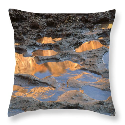 Southwest Throw Pillow featuring the photograph View To The Sky by Sandra Bronstein