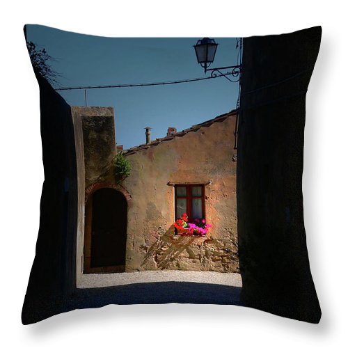 Window Throw Pillow featuring the photograph View Wiith A Window by Angela Wright
