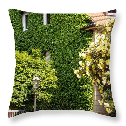 Building Throw Pillow featuring the photograph Vine Cover by Deborah Crew-Johnson
