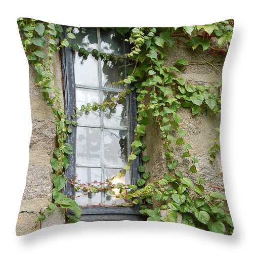 Window Throw Pillow featuring the photograph Vine-covered Mysteries I by Suzanne Gaff