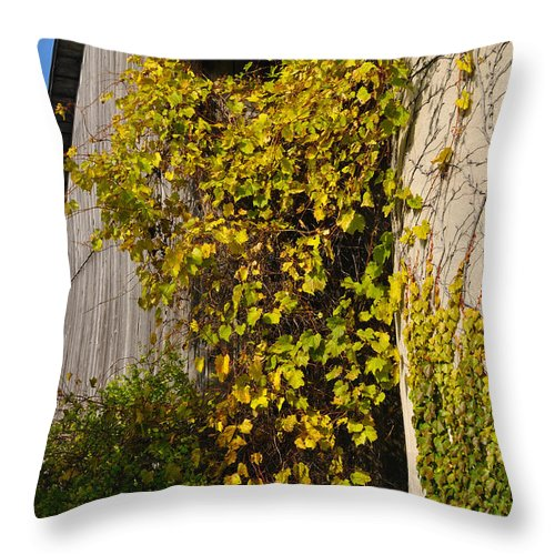 Silo Throw Pillow featuring the photograph Vined Silo by Tim Nyberg