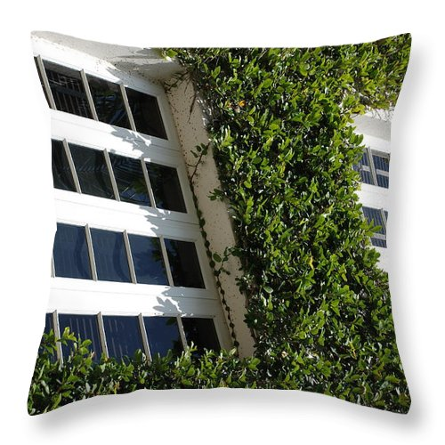Architecture Throw Pillow featuring the photograph Vines And Glass by Rob Hans