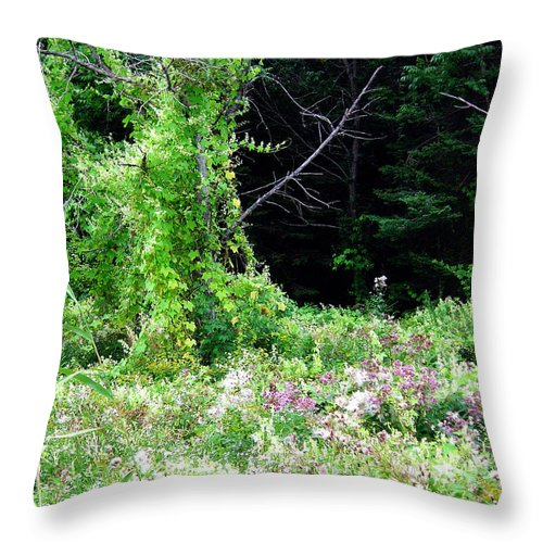 Vines Growth Near Pine Falls Manitoba Throw Pillow featuring the photograph Vines by Joanne Smoley