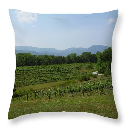Vineyard Throw Pillow featuring the photograph Vineyard by Flavia Westerwelle