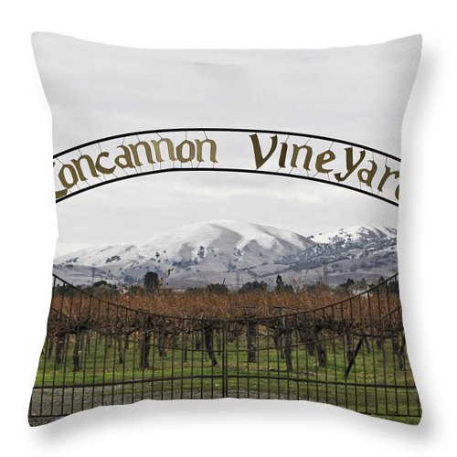 Landscape Throw Pillow featuring the photograph Vineyard Under Snow by Karen W Meyer