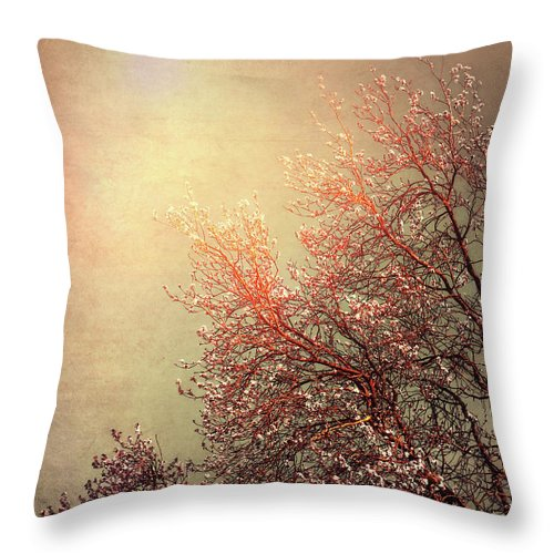 Vintage Throw Pillow featuring the photograph Vintage Cherry Blossom by Wim Lanclus