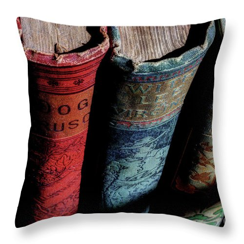 Vintage Books Throw Pillow featuring the photograph Vintage Read by Michael Eingle