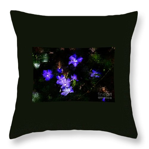 Spring Throw Pillow featuring the photograph Violet by David Lane