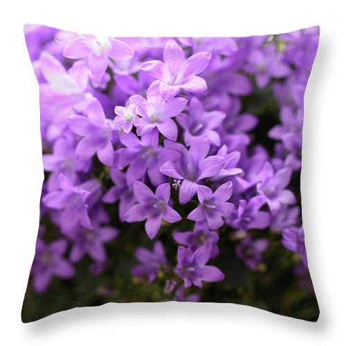 Horizontal Throw Pillow featuring the photograph Violet Dream I by Stefania Levi