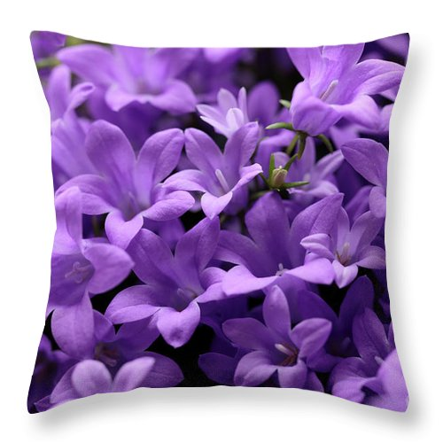 Horizontal Throw Pillow featuring the photograph Violet Dream Iv by Stefania Levi