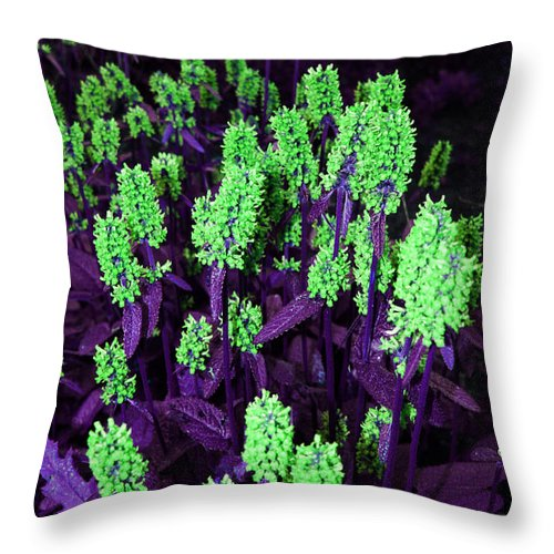 Throw Pillow featuring the photograph Violet Dream On Green by Jamie Lynn