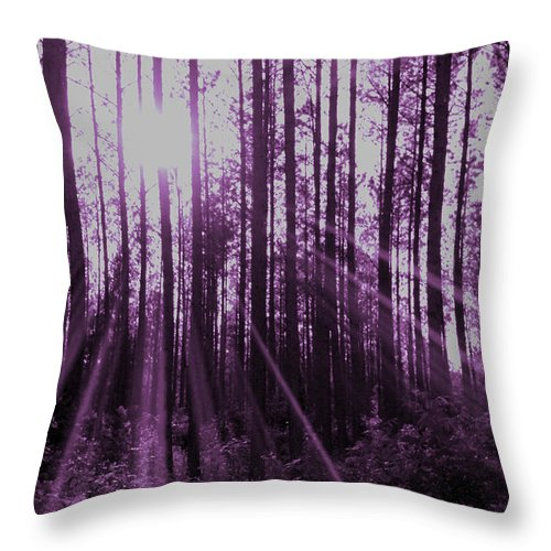 Violet Throw Pillow featuring the photograph Violet Rays by Tina Meador