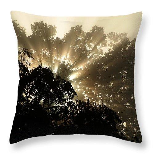 Sunrise Throw Pillow featuring the photograph Virginia Sunrise by Michael McGowan