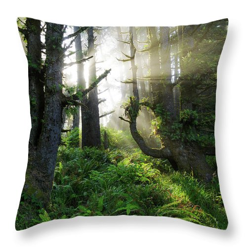 Vision Throw Pillow featuring the photograph Vision by Chad Dutson