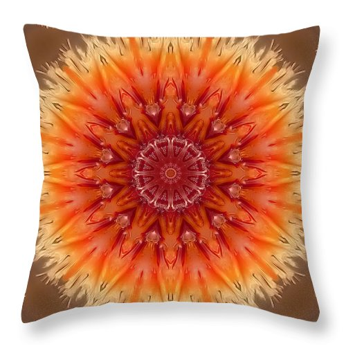Digital Throw Pillow featuring the photograph Vision by Thomas MacPherson Jr