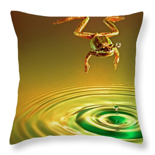 Frog Throw Pillow featuring the photograph Vision by William Freebilly photography