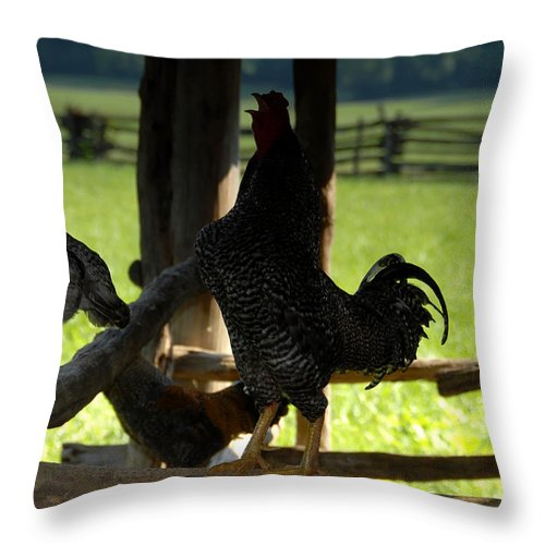 Farm Throw Pillow featuring the photograph Voice Of The Farm by David Lee Thompson