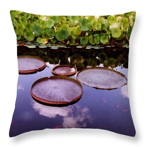 Landscapes Throw Pillow featuring the photograph Voices In The Sky by Jan Amiss Photography