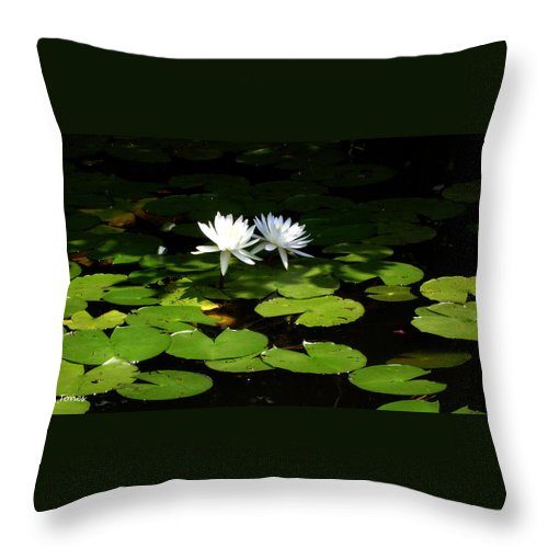 Water Throw Pillow featuring the photograph Wading fairies by Shelley Jones