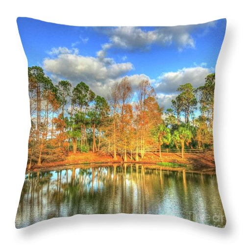 Water Throw Pillow featuring the photograph Wadsworth Park by Debbi Granruth
