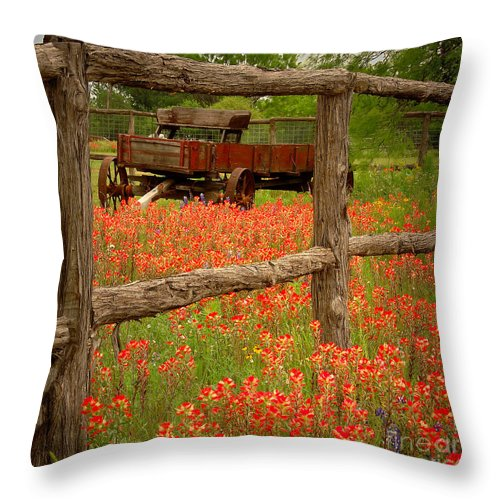 Spring Throw Pillow featuring the photograph Wagon In Paintbrush - Texas Wildflowers Wagon Fence Landscape Flowers by Jon Holiday