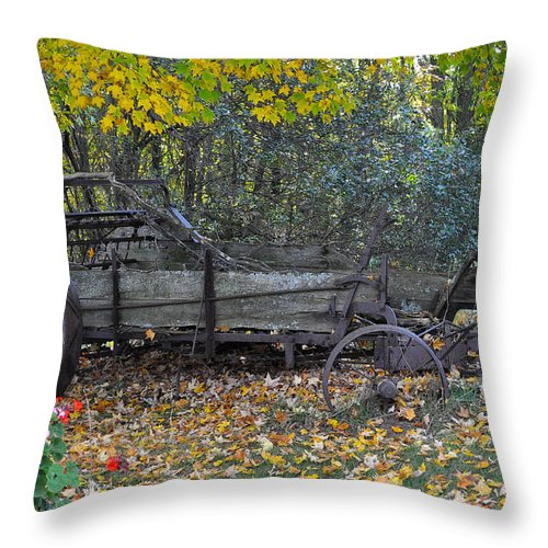 Door County Throw Pillow featuring the photograph Wagon by Tim Nyberg