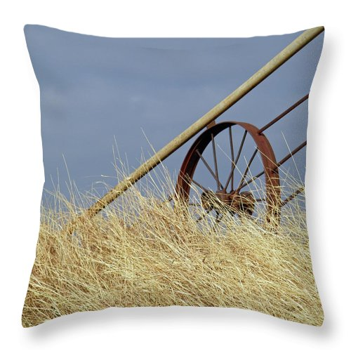 Wagon Wheel Throw Pillow featuring the photograph Wagon Wheel Fence by Gale Cochran-Smith