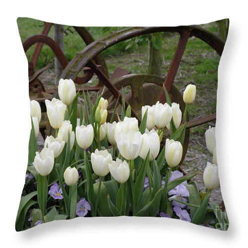 White Throw Pillow featuring the photograph Wagon Wheel Tulips by Louise Magno
