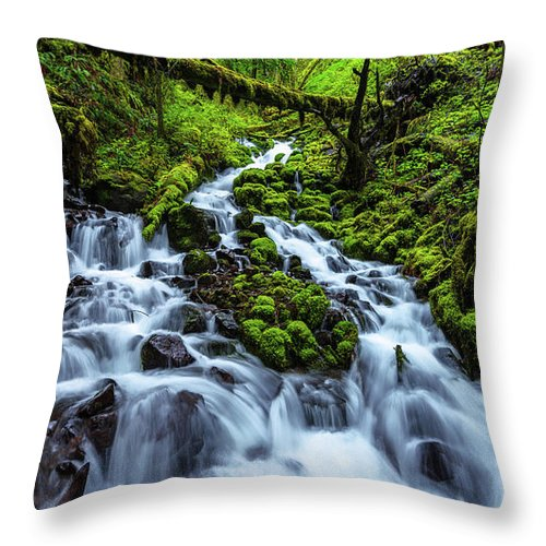Wahkeena Throw Pillow featuring the photograph Wahkeena by Chad Dutson