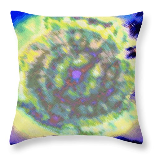 Rainbow Colors Digital Throw Pillow featuring the photograph Waho Ka Manawa by Kenneth Grzesik