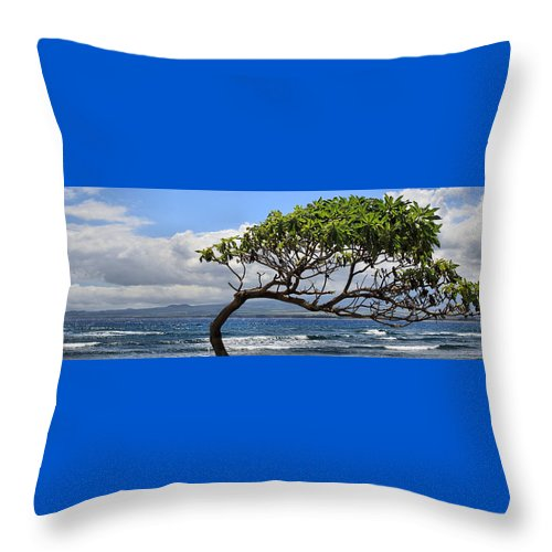 Hawaii Throw Pillow featuring the photograph Waiehu Panarama by DJ Florek