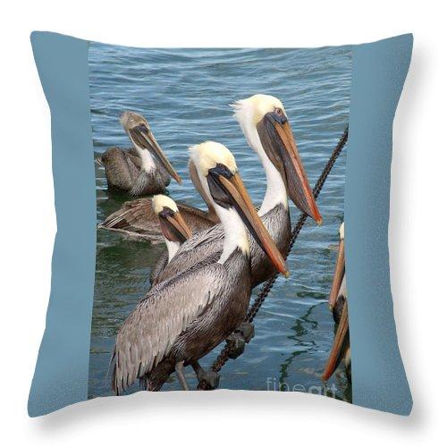Bird Throw Pillow featuring the photograph Waiting For Dinner by Mark Grayden