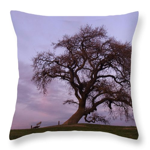 Livermore Throw Pillow featuring the photograph Waiting For Paul by Karen W Meyer