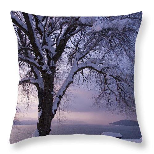 Bench Throw Pillow featuring the photograph Waiting For Spring by Idaho Scenic Images Linda Lantzy