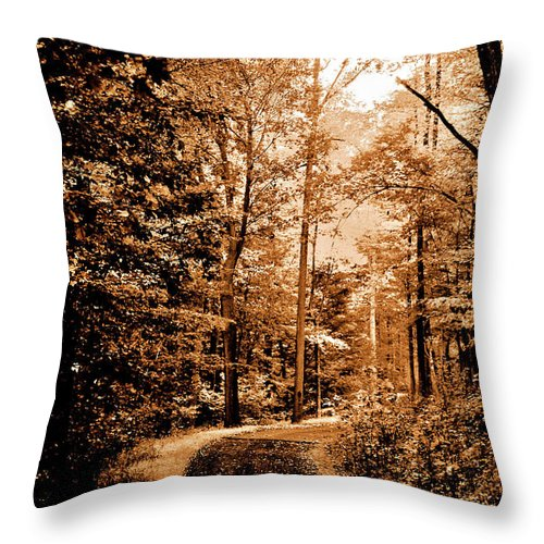 Landscape Throw Pillow featuring the photograph Waiting For Spring by Lori Tambakis