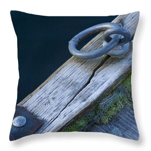 Dock Throw Pillow featuring the photograph Waiting For Summer by Idaho Scenic Images Linda Lantzy