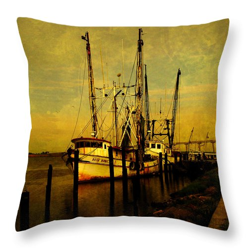 Rosa Marie Throw Pillow featuring the photograph Waiting For Tomorrow by Susanne Van Hulst