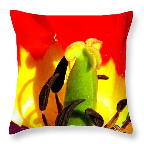 Abstract Throw Pillow featuring the photograph Waiting by Ian MacDonald