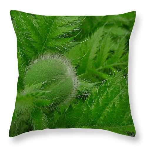 Poppy Throw Pillow featuring the photograph Waiting by Jacqueline Milner
