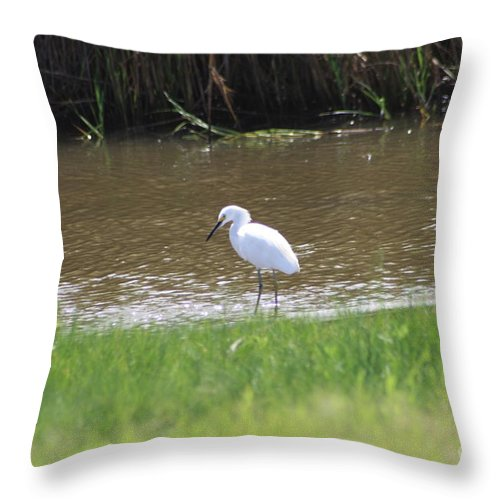 White Throw Pillow featuring the photograph Waiting by John W Smith III