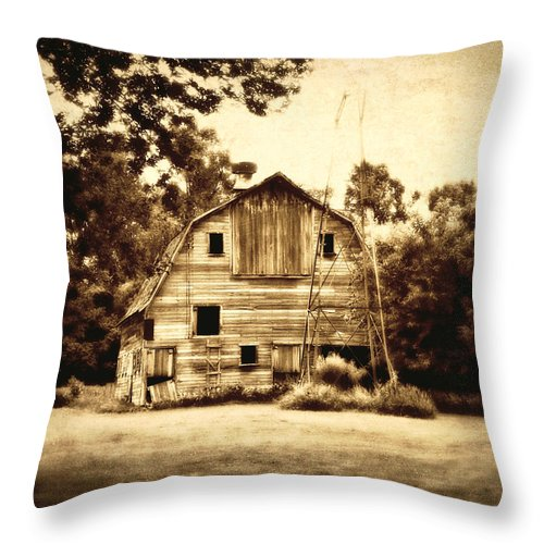 Barn Throw Pillow featuring the photograph Waiting by Julie Hamilton