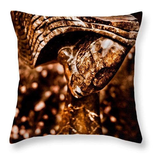 Art Throw Pillow featuring the photograph Waiting Patiently by Venetta Archer