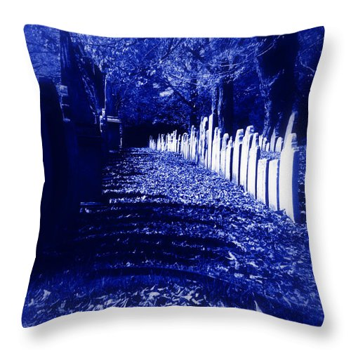 Halloween Throw Pillow featuring the photograph Waking In The Night by Linda Galok